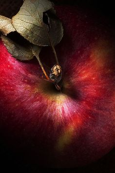 "Pomme ""Royal Gala"" ~ ""With an apple I will astonish Paris."" Paul Cezanne ~ Via @ elsadavern Apple My, Red Apple, Apple Tree, Fruit And Veg, Fruits And Veggies, Vegetables, Food Styling, Photo Fruit, Gourmet"