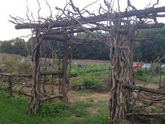 Every garden needs such a rustic and whimsical arch. This one was made by Greg Adams of Lapel, IN, who makes rustic furniture from branches, twigs, roots, and other natural materials