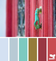color knock