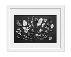 Hey, I found this really awesome Etsy listing at https://www.etsy.com/listing/100033940/bw-spring-8x10-fine-art-photographic