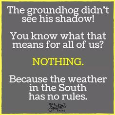 Our weathermen can't even predict it half the time. There's no way a giant rat will get it right. Alabama Memes, Mason Dixon Line, Weather Memes, Original Memes, Southern Sayings, Life Rules, Tears Of Joy, Gods Grace, Good People