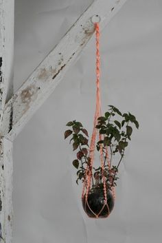 macrame - love this idea, maybe three in a corner, hanging at different levels.