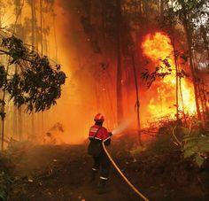 incendio en america latina provocado por reformas institucionales.
