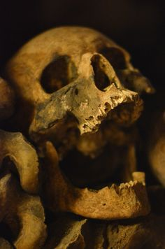 Inspiration for A Crime of Fashion: the Catacombs of Paris. Find out what happens in A Crime of Fashion… #ModelUnderCover #CrimeofFashion