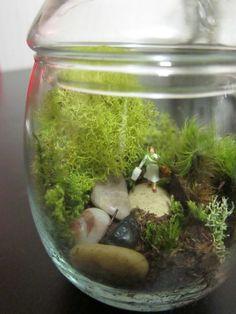 Twig Terrariums Workshop | The Zen of Making