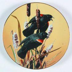 WS GeorgePortrait of Exquisite Birds: Red-Winged Blackbird - Artist: Carl Brenders