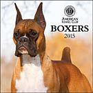 Boxers 2015 Wall Calendar: 9781554567898 | Boxer | Calendars.com