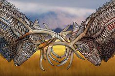 Elk - West Coast Wildlife Illustrations on Behance by Sandy Pell and Steve Pell of Pellvetica. See the full set: https://www.behance.net/gallery/29874875/West-Coast-Wildlife-Illustrations