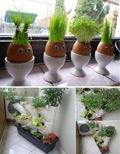 Avoir des plantes aromatiques dans la cuisine cultivées dans des coquilles d'oeufs ou dans des tubes PVC sur le balcon une idée originale à essayer à tout prix !