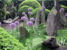 Surreal garden - Google Search