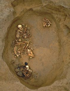 A 3,000-year-old burial site in Kent has been found to contain the remains of migrants from as far away as Scandinavia and the western Mediterranean. A total of 25 people, aged between 6 and 55 at the time of their death, were found in the pits. The researchers found a group of nine spent their lives in the local area, while eight were believed to have been born in what is now southern Norway or Sweden. Another five came from the western Mediterranean, possibly Spain or even North Africa.