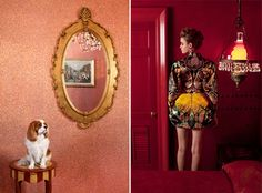 Aaron Ruell Photography. | yellowtrace blog »
