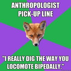 Anthropologie- Anthropology Major Fox If you shop there you should know. Anthropology Major, Forensic Anthropology, Biological Anthropology, Stonehenge, Fox Memes, What Makes You Beautiful, Beautiful Beautiful, Forensic Science, Materials Science