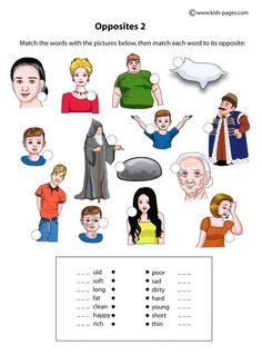 Opposite Adjectives 2 worksheets