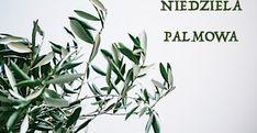 Ewangelia Wielkiego Piątku   DeNews Plant Leaves, Plants, Plant, Planets