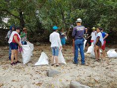 La Fundación Ambiental y Cultural FAMBARU, a través de su programa de voluntarios Ambientales: Protectores del Agua, puso en marcha con el cuerpo de bomberos del Municipio de Alvarado Tolima, esta campaña para promover la limpieza de residuos y desechos tóxicos para nuestro medio ambiente que se han acumulado en las riberas del Río y a su vez llevar un mensaje a la sociedad sobre la necesidad de ser responsables con todos nuestros desechos y respetuosos con el entorno natural que nos rodea. Natural, Hats, Packing Light, Water Quality, Fire Dept, Volunteers, Teamwork, Cleaning, Hat