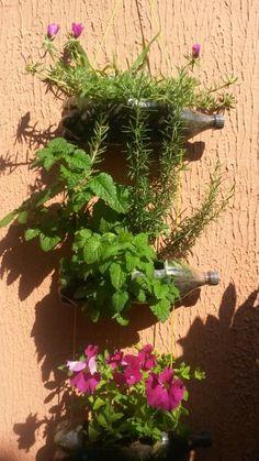 Floreira sustentável feitas em garrafa pet