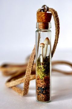 READY TO SHIP!! One of my favorite pieces Ive made! This woodland-inspired piece features a tiny pair of mushrooms(made from polymer clay), cuddled together upon layers of moss, gravel and sand. The moss has been packed tightly so that it will remain layered if turned upright. The vial is 2 tall and has a cork top. It is hung from 28 beige suede leather cord and connects in the back with silver findings and a magnetic clasp. This type of clasp is convenient for putting on and taking off your…