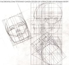 https://www.facebook.com/Stefano-Lanza-Study-of-structure-of-human-body-1479159998770051/?ref=bookmarks #head #math #art #draw #drawing #anatomy