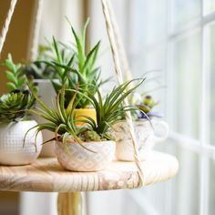 Create this simple yet stunning floating shelf. Top it with succulents or other collectible decor for a unique piece.