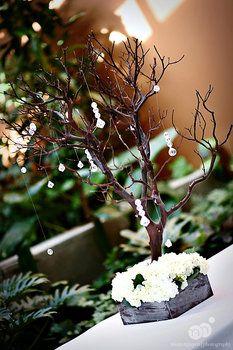 Wedding, Flowers, Centerpiece, Manzanita, Mimi nguyen photography, Manzanita centerpieces, Manzanita branches,