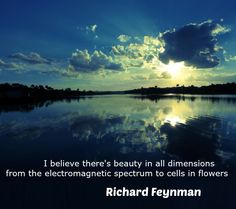 """""""I believe there's beauty in all dimensions…"""" Richard Feynman - More at: http://quotespictures.net/20748/i-believe-theres-beauty-in-all-dimensions-richard-feynman"""