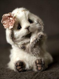 Bunny Yuna by Maria Ivanova