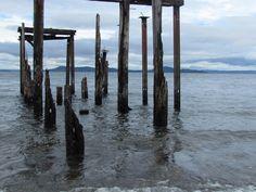 Un antiguo embarcadero, Futrono region de los Lagos, Chile