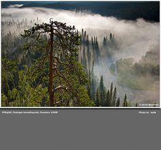 Kitkajoki, Oulangan Kansallispuisto, Kuusamo. Valokuvaaja Jarmo Manninen, Finland