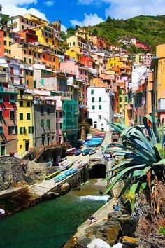 Italie Cinque Terre I'm entranced by the colors of the buildings.