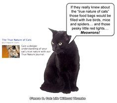 True Nature of Cats http://cmeredcat.blogspot.com/