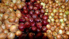 Vöröshagyma fajták – a magyaros konyha ételeinek egyik fő alapanyaga, mely minden háztartásban megtalálható. Hasznos tudnivalók, információk. Home Grown Vegetables, Healthy Vegetables, Planting Onions, Pickled Onions, Summer Garden, Agriculture, Harvest, Spices, Healthy Recipes