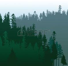caniferous forêt