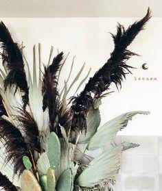 Feather-like black pampas grass Cactus Flower, Cactus Plants, Flower Art, Grass Decor, Cactus Wedding, Pampas Grass, Dried Flowers, Purple Flowers, Floral Arrangements