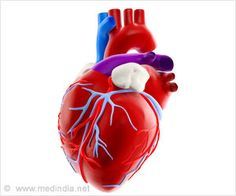 India�s First Ever Long-Haul Heart Transplantation