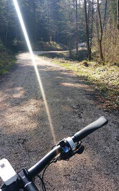 Stetig bergauf über angenehme Forstwege - mit dem MTB am Zinnkopf bei Ruhpolding im Chiemgau