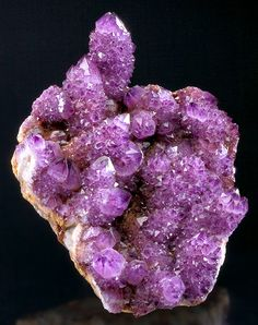 Cactus Amethyst crystals on matrix. From the Magaliesburg Mts., Pretoria, Gauteng Province, South Africa. Measures 14.8 cm by 11.5 cm by 5.7 cm in total size.