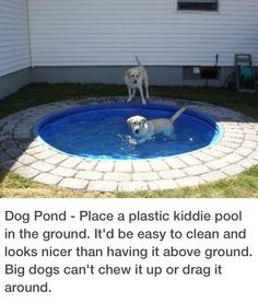Dog Pond - Place a plastic kiddie pool in the ground. It'd be easy to clean and looks nicer than having it above ground. Big dogs can't chew it up or drag it around. Not into it being a dog pond but would be cute for a kiddie pool or pond :) Outdoor Projects, Home Projects, Backyard Projects, Craft Projects, Backyard Ideas, Dog Backyard, Dog Friendly Backyard, Firepit Ideas, Backyard Retreat