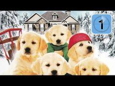 Golden Winter - Wir suchen ein Zuhause (Drama Spielfilm) *HD*
