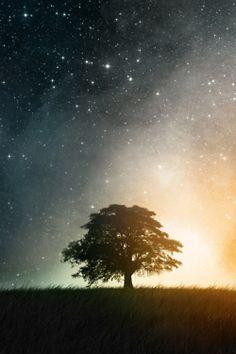 #star #starry #sky #estrelado #céu