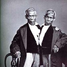 """¿Te has preguntado alguna vez por qué llamamos """"gemelos siameses"""" a dos gemelos unidos por alguna parte del cuerpo? Chang y Eng fueron un par de gemelos siameses nacidos en 1811 en Tailandia, el país anteriormente conocido como Siam. Unidos por el esternón, recorrieron Gran Bretaña como parte de un viaje de """"freak show"""", un espectáculo pensado para entretener y sorprender al público. Tras hacerse famosos como """"los gemelos siameses"""", el nombre se consolidó, y desde entonces ha sido utilizado…"""