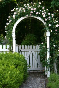 Arbor Climbing roses on rose covered arbors. Absolutely beautiful and many bloom all summer long.Climbing roses on rose covered arbors. Absolutely beautiful and many bloom all summer long. Landscaping Along Fence, Backyard Fences, Garden Fencing, Backyard Landscaping, Landscaping Ideas, Garden Pool, Shade Garden, Fenced Garden, Backyard Plants