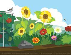 http://2.bp.blogspot.com/-lIBlm2dn3Q0/Tq93w39pvJI/AAAAAAAAAcY/DD4dJhP4RP4/s1600/BS_Garden_Mural_Summer.jpg