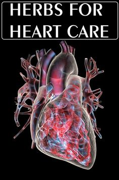 HERBS FOR HEART CARE