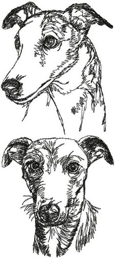 Advanced Embroidery Designs - Whippet Set