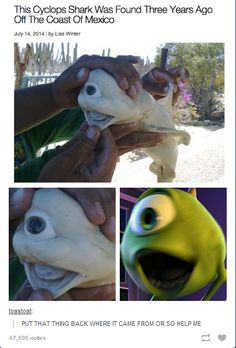 creepi, fans, tag, monsters inc, die, baby pictures, shark, disney, comment