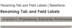 Renaming Tab and Field Labels