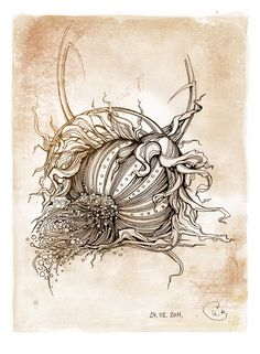 16 Trendy Ideas Line Art Drawings Sketches Ink Behance Ink Pen Drawings, Art Drawings Sketches, Botanical Drawings, Botanical Art, Illustrations, Illustration Art, Art Plastique, Doodle Art, Line Art