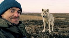 This is one amazing selfie!! Gordon Buchanan with Scruffy the Wolf. The best wildlife documentary ever.