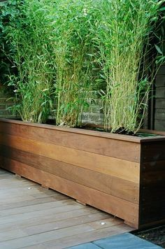 Gorgeous 41 Cozy Built In Planter Design Ideas To Upgrade Your Outdoor Space Bamboo Planter, Diy Planter Box, Wood Planters, Long Planter Boxes, Wooden Planter Boxes, Backyard Planters, Backyard Landscaping, Modern Backyard, Tall Outdoor Planters